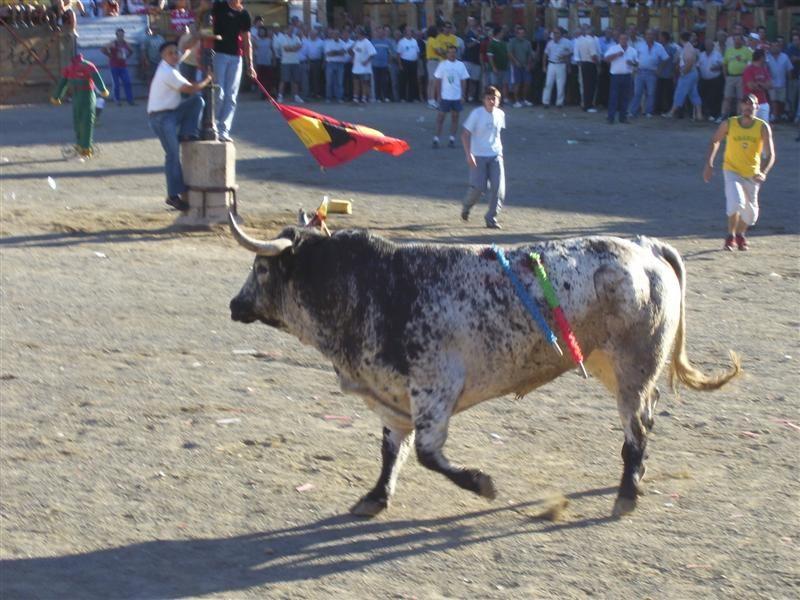 Fin de Fiestas