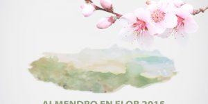 almendro en flor 2015