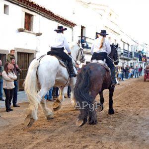 Una mujer de 66 años se encuentra en estado crítico al caerse del caballo en Arroyo de la luz