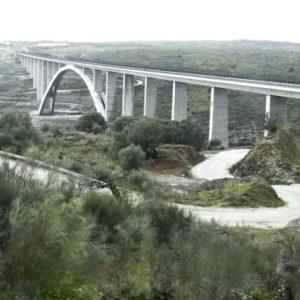 El viaducto de Almonte, Medalla Gustav Lindenthal
