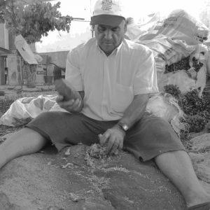 Mi pueblo y su gente: Los piñoneros