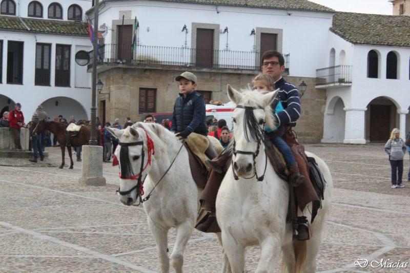 Celebración de la XVII edicion del Almendro en Flor.